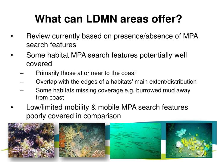 What can LDMN areas offer?
