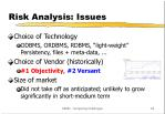 risk analysis issues