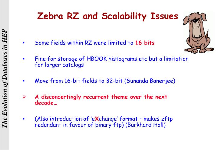 Zebra RZ and Scalability Issues