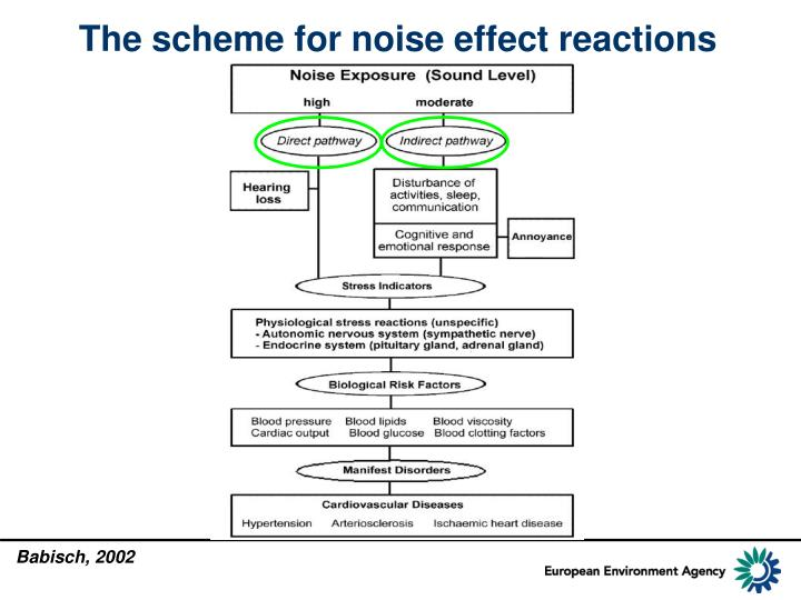 The scheme for noise effect reactions