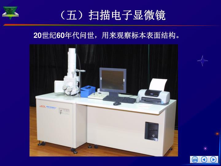 (五)扫描电子显微镜