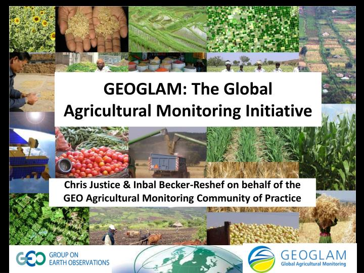 Geoglam the global agricultural monitoring initiative