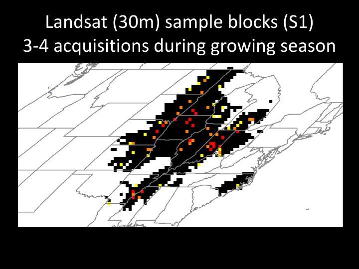 Landsat (30m) sample blocks (S1)
