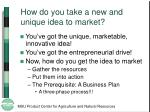 how do you take a new and unique idea to market