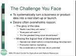 the challenge you face