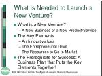 what is needed to launch a new venture