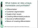 what makes an idea unique marketable and profitable