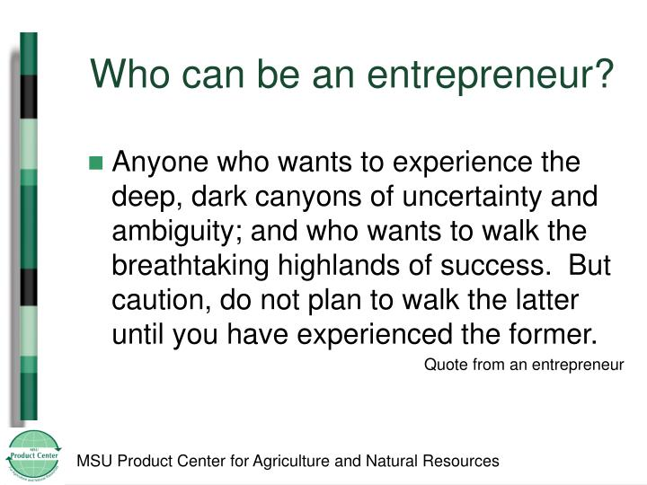 Who can be an entrepreneur?