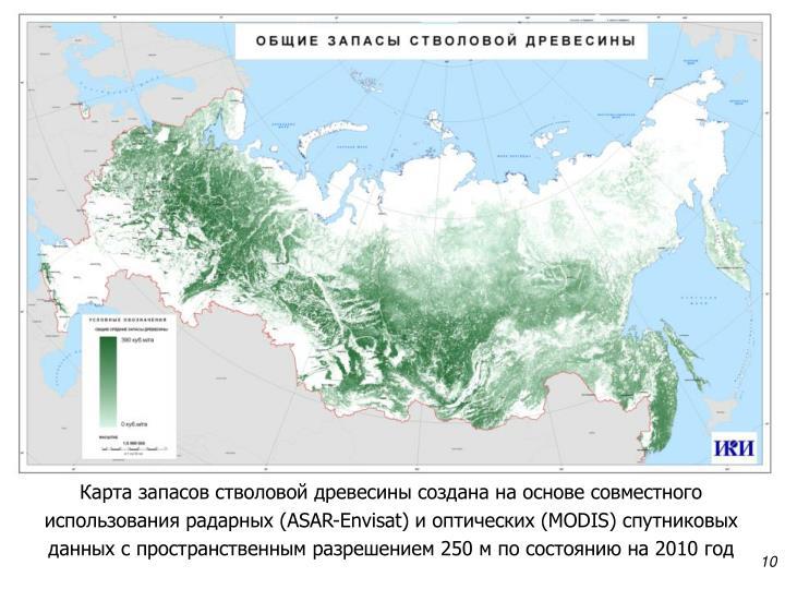 Карта запасов стволовой древесины создана на основе совместного использования радарных (