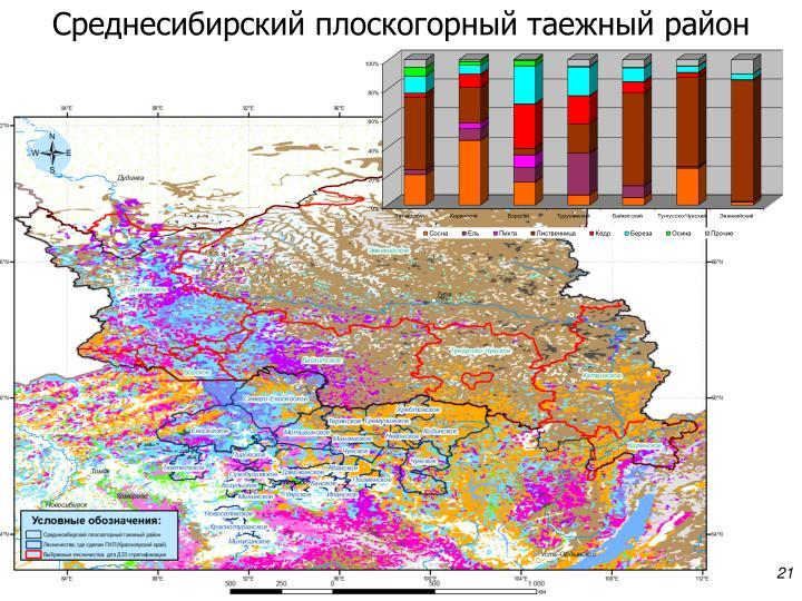 Среднесибирский плоскогорный таежный район