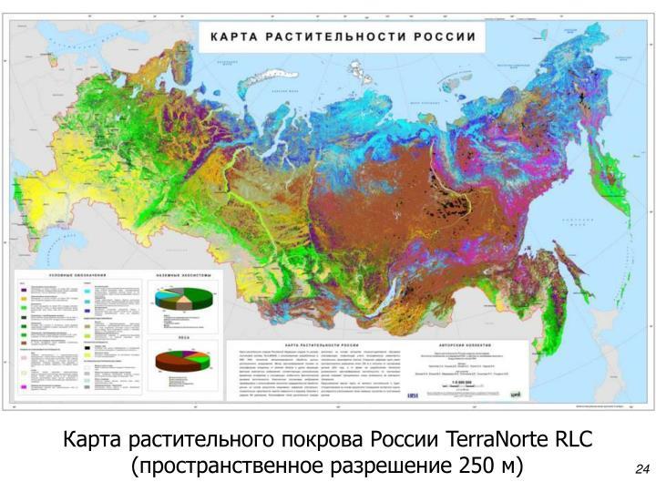 Карта растительного покрова России