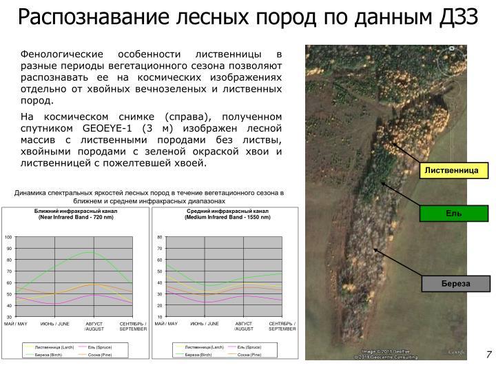 Распознавание лесных пород по данным ДЗЗ