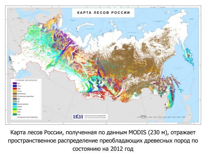 Карта лесов России, полученная по данным