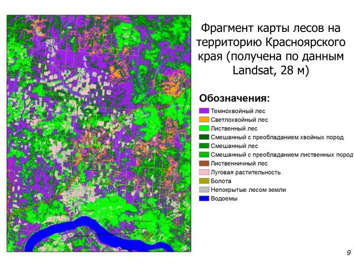Фрагмент карты лесов на территорию Красноярского края (получена по данным