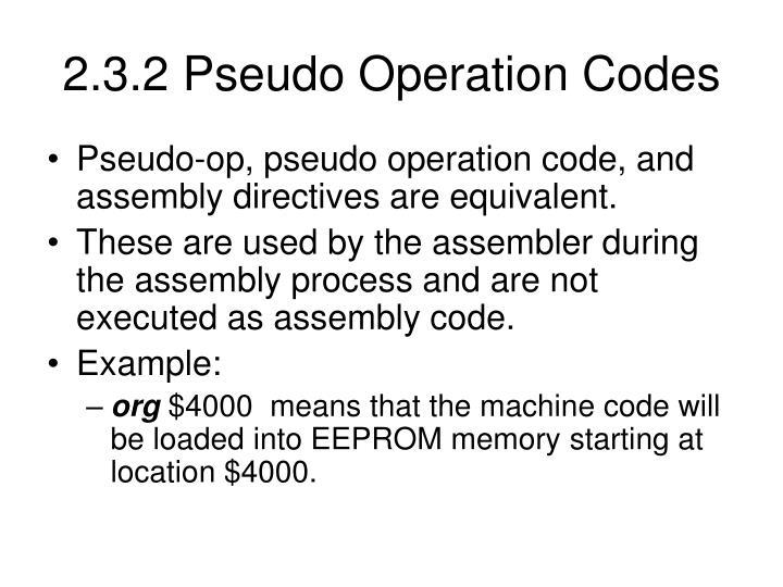2.3.2 Pseudo Operation Codes