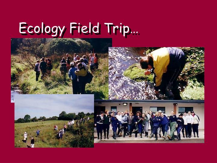 Ecology Field Trip…