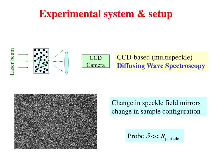 Experimental system & setup