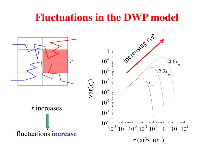 Fluctuations in the DWP model