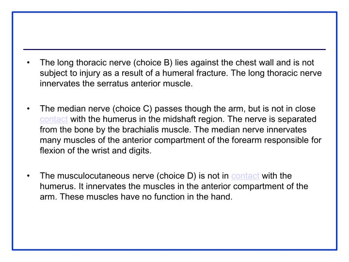 The long thoracic nerve (choice B) lies against the chest wall and is not subject to injury as a result of a humeral fracture. The long thoracic nerve innervates the serratus anterior muscle.