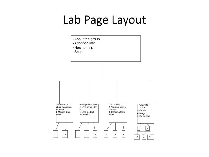 Lab Page Layout