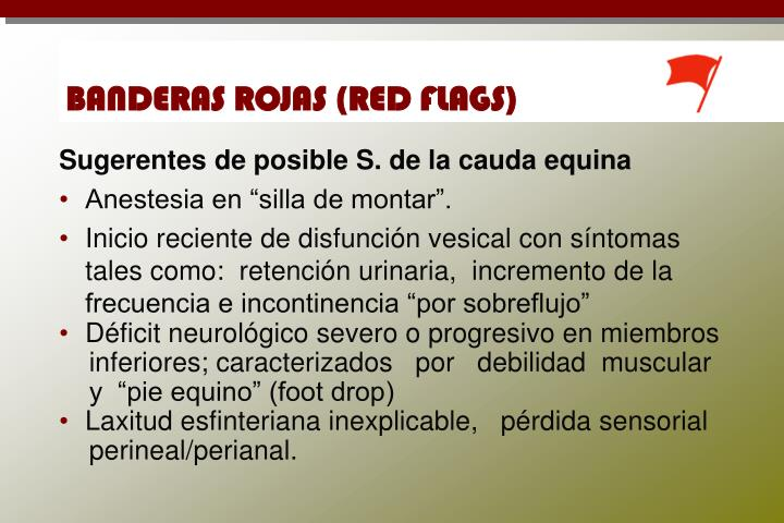 BANDERAS ROJAS (RED FLAGS)