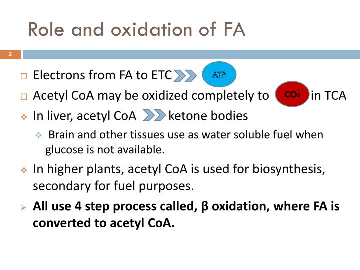 Role and oxidation of FA