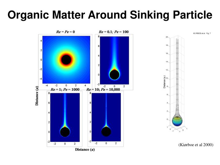 Organic Matter Around Sinking Particle