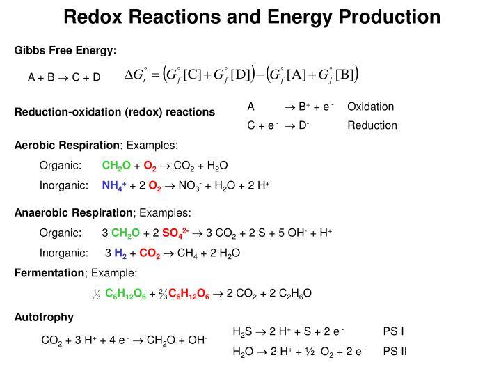 Redox Reactions and Energy Production