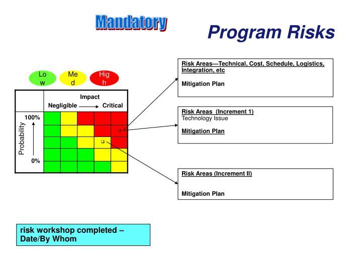 Program Risks
