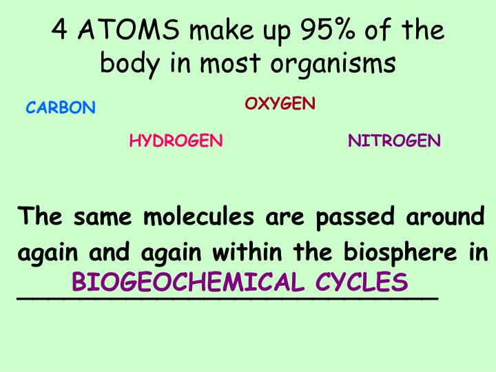 4 ATOMS make up 95% of the body in most organisms
