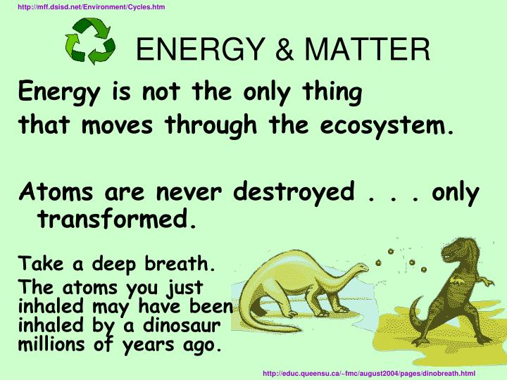 http://mff.dsisd.net/Environment/Cycles.htm