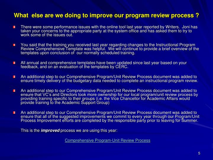 What  else are we doing to improve our program review process ?