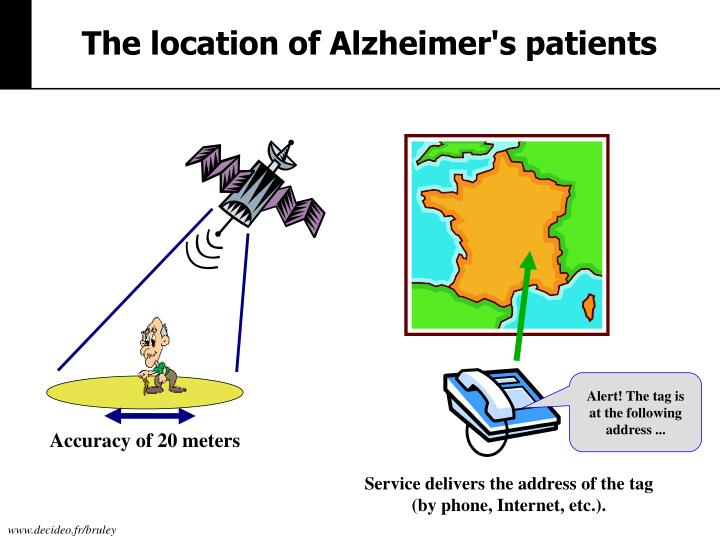 The location of Alzheimer's
