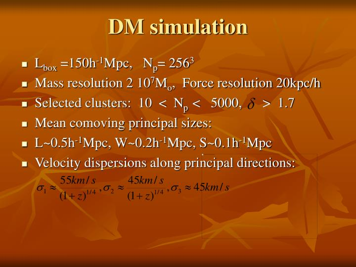 DM simulation