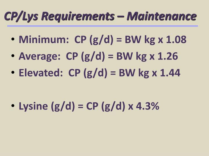CP/Lys Requirements – Maintenance