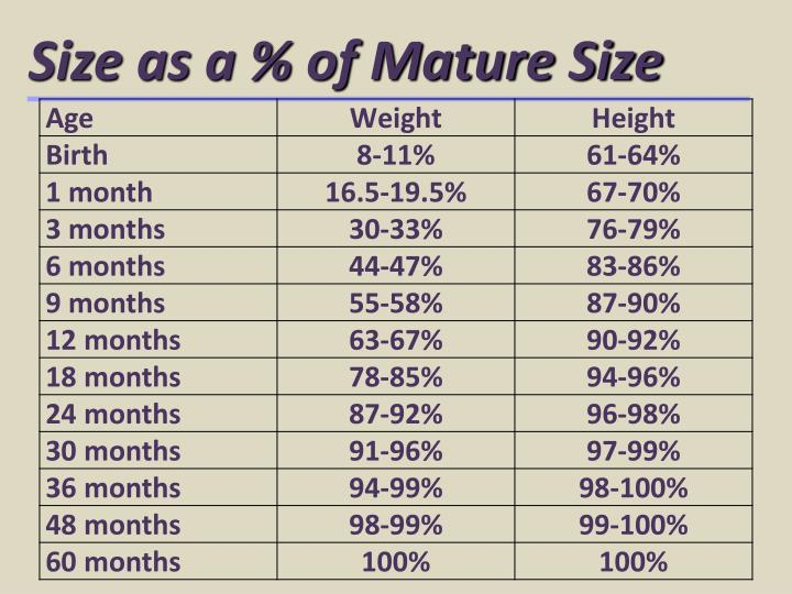 Size as a % of Mature Size