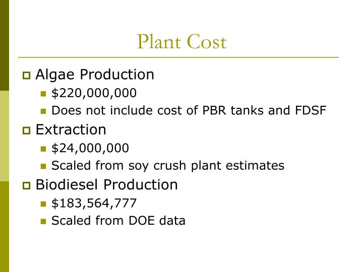 Plant Cost
