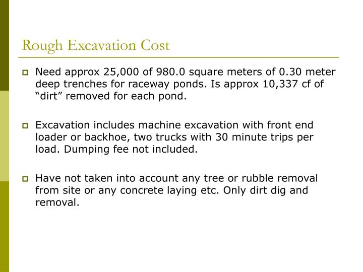 Rough Excavation Cost