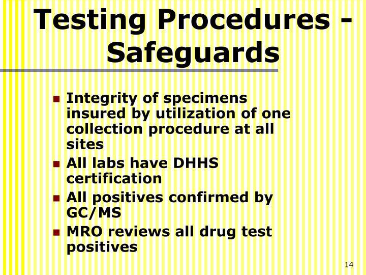 Testing Procedures - Safeguards