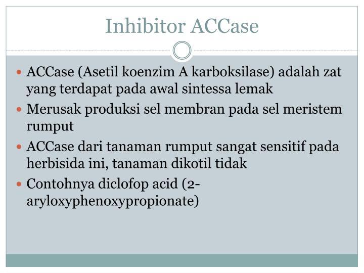 Inhibitor ACCase