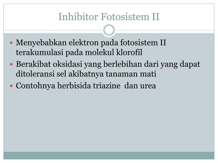 Inhibitor Fotosistem II