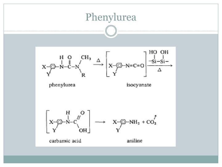 Phenylurea