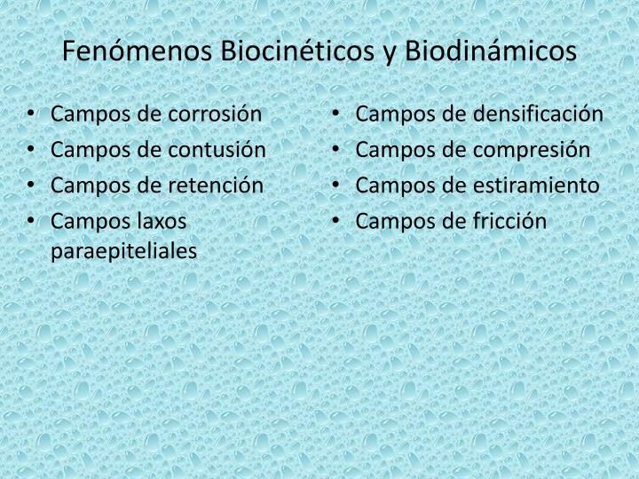 Fenómenos Biocinéticos y Biodinámicos