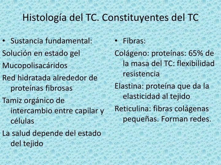 Histología del TC. Constituyentes del TC