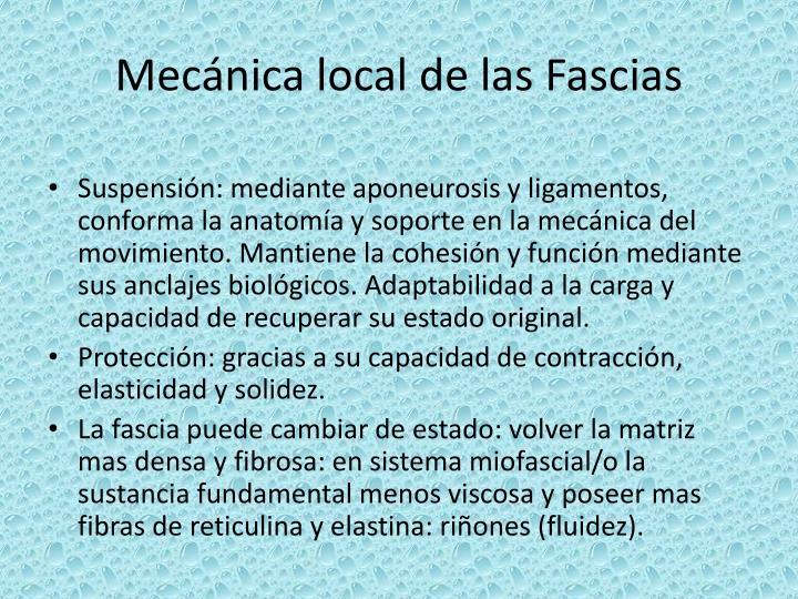 Mecánica local de las Fascias