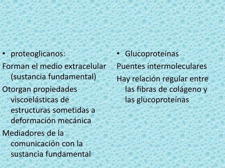 proteoglicanos: