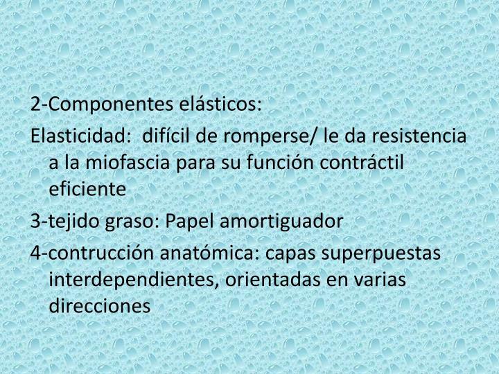 2-Componentes elásticos: