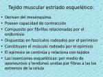 tejido muscular estriado esquel tico