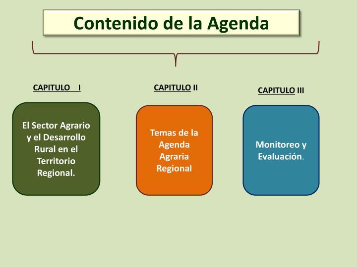 Contenido de la Agenda