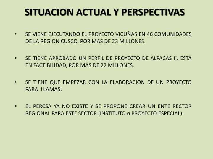 SITUACION ACTUAL Y PERSPECTIVAS